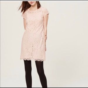 Loft blush pink lace dress